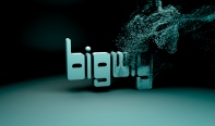Bigwig er engelsk slangord og betyr; viktig mann, storkar, important person.